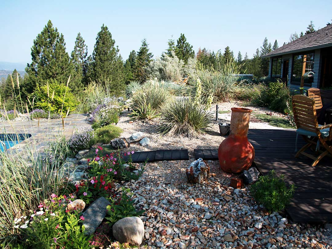 The Youngberg Garden after xeriscape project