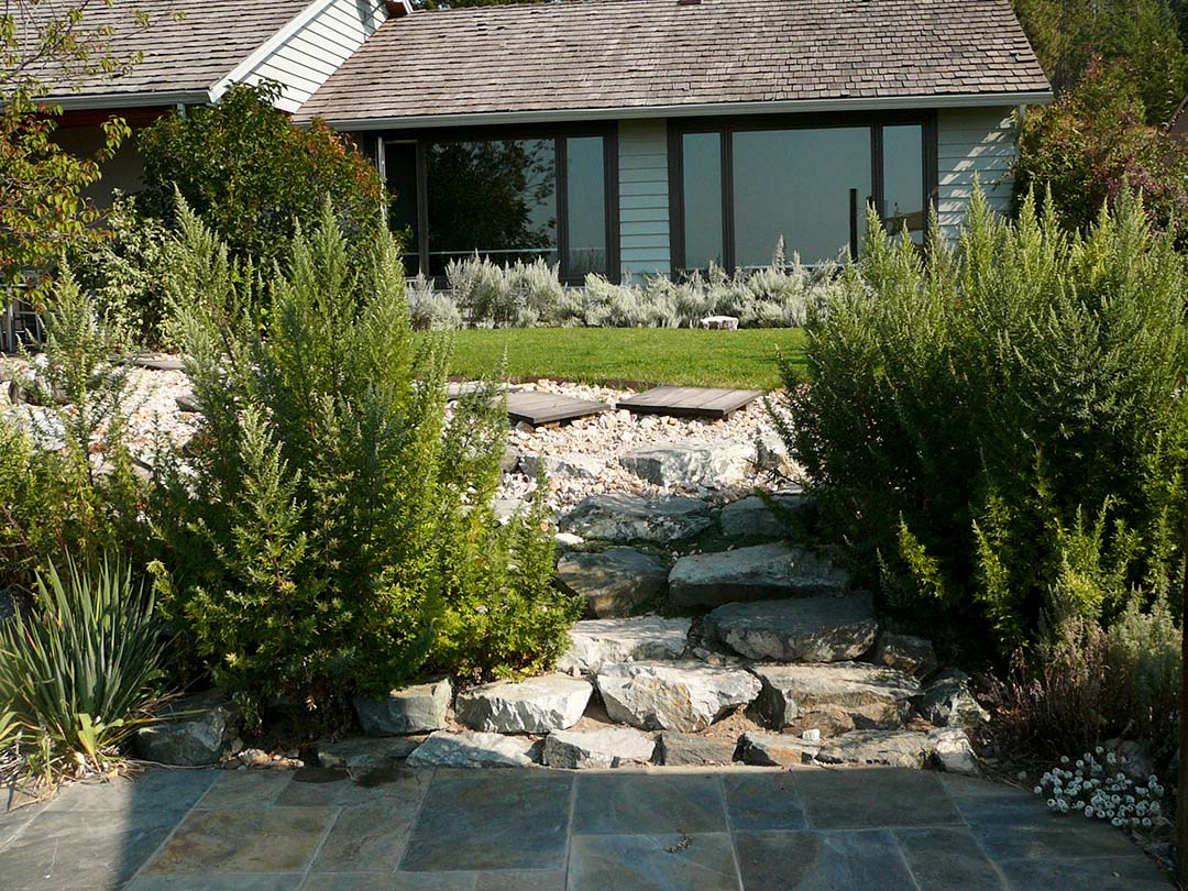 Practical turf areas in xeriscape project