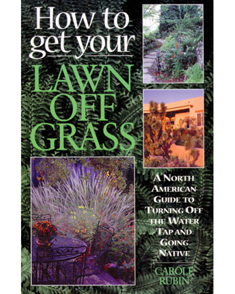How to Get Your Lawn off Grass