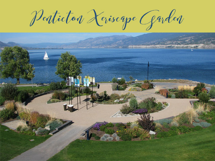 Link to the Penticton Xeriscape Garden in the South Okanagan