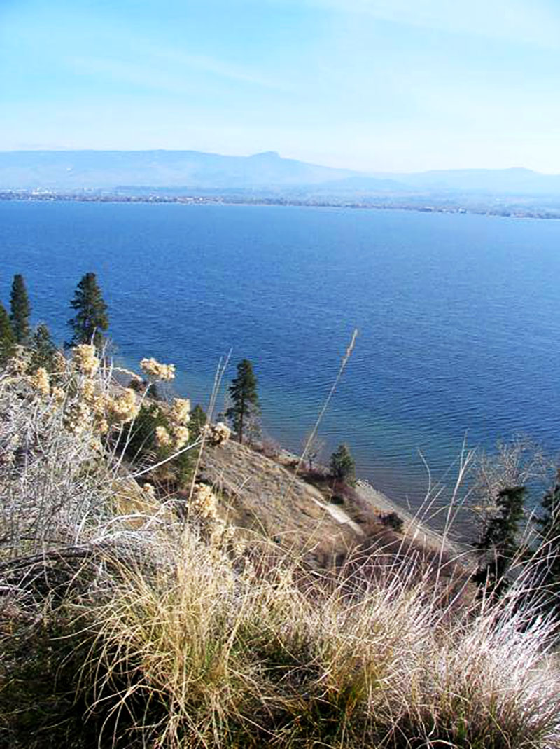 Kalamoir Park in the Okanagan