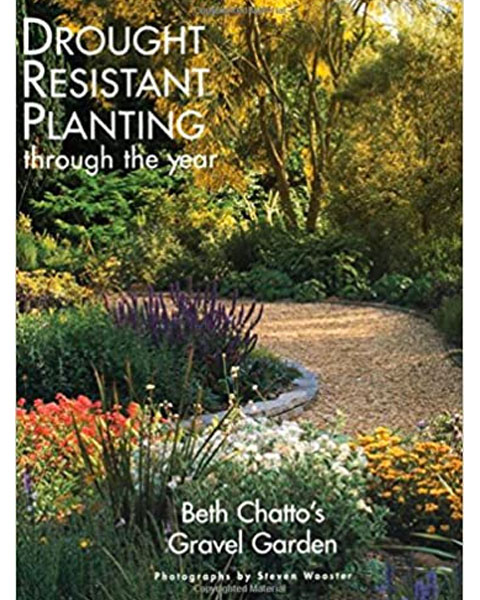 Drought Resistant Planting through the Year by BethChattooo