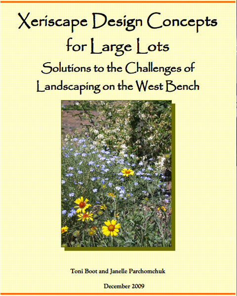 Xeriscape Design Concepts for Large Lots