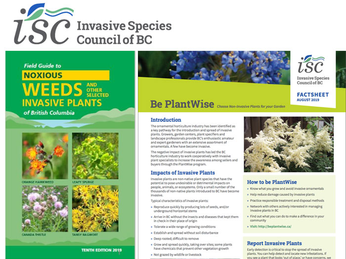 Link to the Invasive Species Council of BC website of interest for naturalization projects in BC