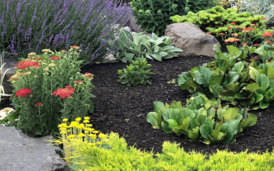 Mulches for Okanagan Xeriscaping