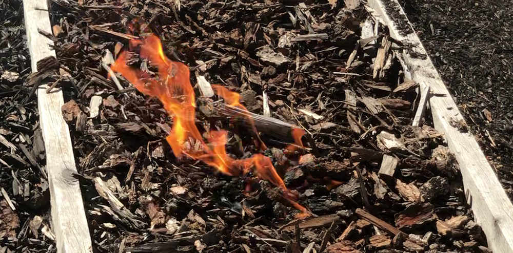Flames in fir mulch spread with wind