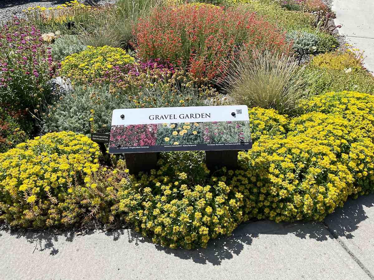 Gravel Garden in the UnH2O Demonstration xeriscape garden in Kelowna